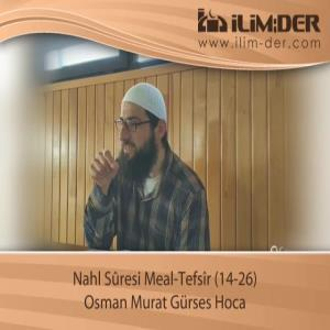 Nahl Sûresi Meal-Tefsîr (14-26)