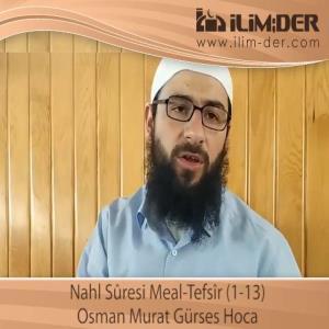 Nahl Sûresi Meal-Tefsîr (1-13)