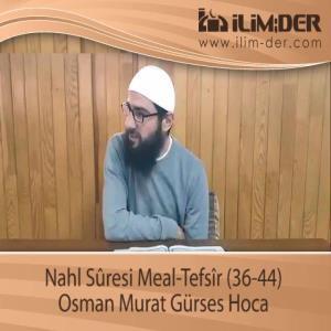 Nahl Sûresi Meal-Tefsîr (36-44)